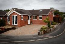 Bungalow for sale in Francis Road, Lichfield...