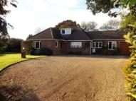 Bungalow for sale in Hill Pound, Swanmore...