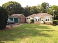 Bungalow in Hill Coppice Road...