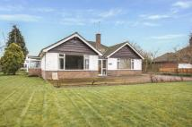 3 bed Bungalow in Steyning Lane...