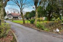 Bungalow in Linby Lane, Linby...