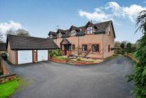 Detached house for sale in Papplewick Lane...