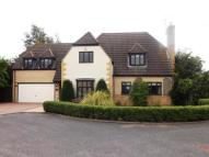 5 bedroom Detached home in The Orchard, Werrington...