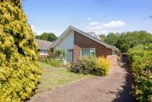 Bungalow in The Crescent, Canterbury...