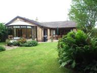 Bungalow in Hawkwell...