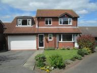 4 bed Detached home in Greener Court, Prudhoe...
