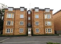 Flat for sale in Coltpark Woods...