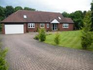 6 bedroom Bungalow for sale in Carnoustie, Usworth...