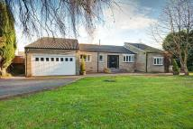 3 bed Bungalow for sale in Shap Close, Washington...