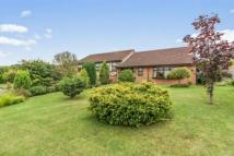 4 bed Detached house in High Green...