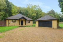 Bungalow in Chorleywood...