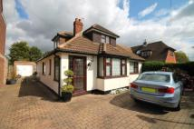4 bedroom Bungalow in Homemead Road, Bromley