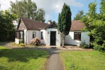 3 bed Bungalow in Southfield Road...
