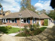 Bungalow for sale in Doctors Lane, Chaldon...