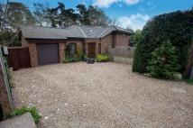 3 bed Detached home for sale in Chaldon Common Road...