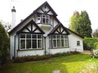 Bungalow in Whyteleafe Road...