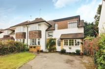 4 bedroom semi detached home for sale in Hinchley Wood, Surrey