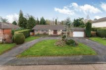 Bungalow for sale in Fetcham, Leatherhead...