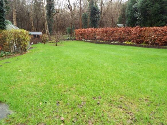 Further back garden