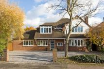 Detached property in Grove Way, Esher, Surrey...
