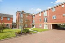 new Flat in Willenhall Road...