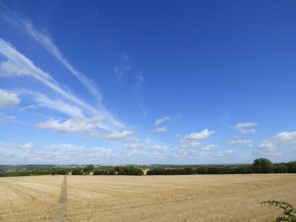 Nearby fields