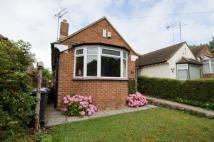Boughton Green Road Bungalow for sale