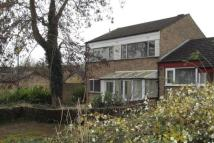 5 bed semi detached home in Great Denson, Eaglestone...