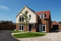 4 bed new house for sale in Sycamore Close...