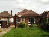 Bungalow in Exton Avenue, Luton...