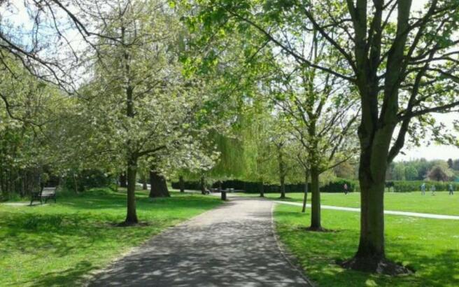 Central Park Dartfor