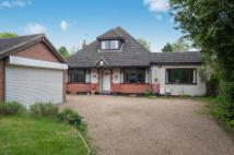 Bungalow for sale in Ash Road, Hartley...