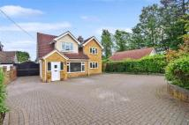 Bungalow for sale in Longfield Avenue...