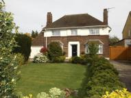 Detached property for sale in Queenborough Road...