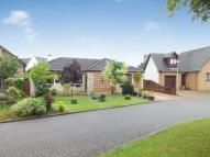 Bungalow in Kirk Court, Stonehouse...