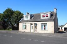 semi detached home for sale in Cambusnethan Street...