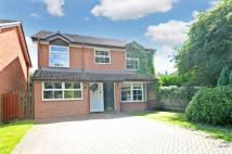 Chineham Detached house for sale
