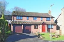 Detached house for sale in Basingstoke, Hampshire