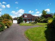 3 bed Bungalow for sale in Bookham, Leatherhead...