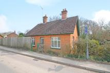 Bungalow for sale in Cranleigh, Surrey