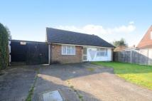 2 bedroom Bungalow for sale in Cranleigh, Surrey