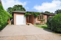 Bungalow in Cranleigh, Surrey