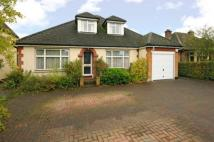 5 bedroom Bungalow for sale in Effingham, Surrey