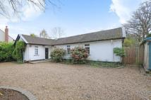 Bungalow in West Horsley...