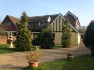 5 bed semi detached house for sale in Longmoor Road, Liphook...