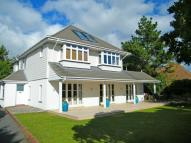 Detached property for sale in Bure Road, Friars Cliff...