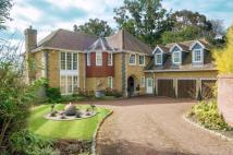 5 bed Detached house for sale in Chobham, Woking, Surrey