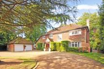 4 bed Detached house in Hook Heath, Woking...