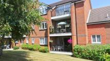3 bed Flat in Windsor House...