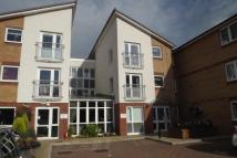 Retirement Property for sale in Millfield Court, Crawley...